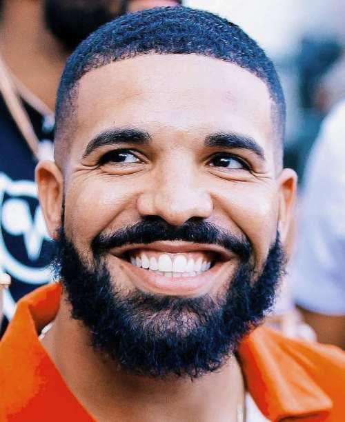 drake beard hair