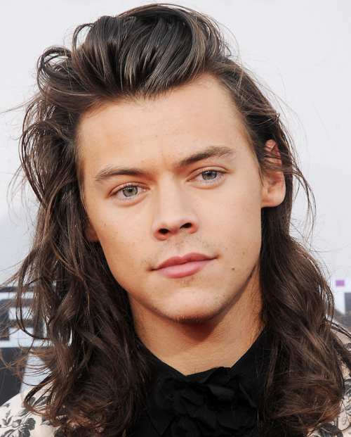 harry styles famous long hair