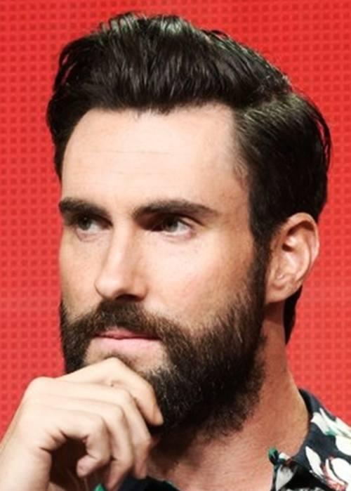 13 adam levin beard style new